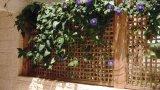 גדר עץ יוקרתית לגינה