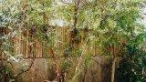 גדרות עץ לגינה